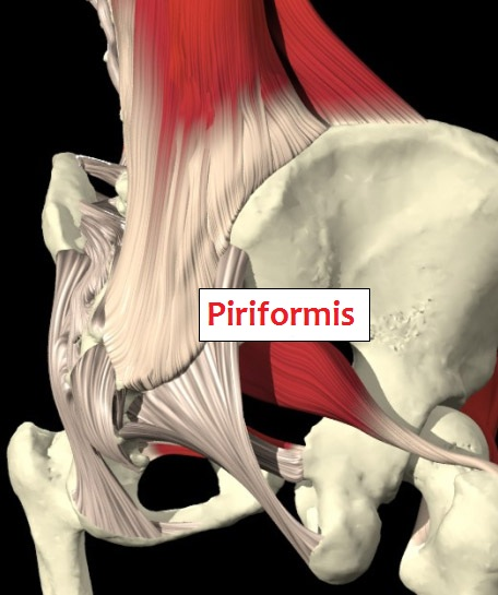 Piriformis and Sunstone Massage Therapy