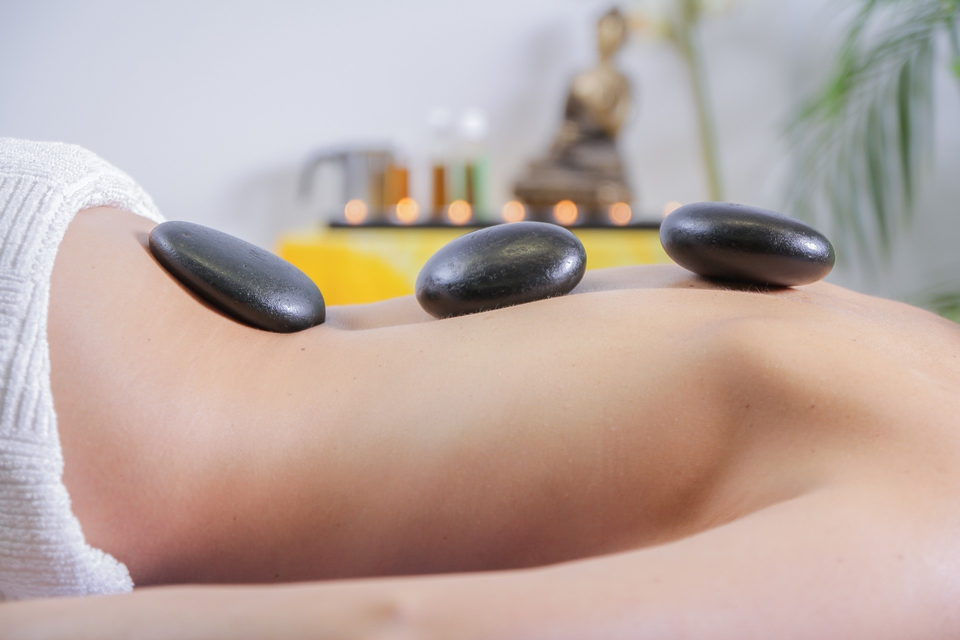 Massage Therapy, The Largest Organ Of The Body, Vaughan Ontario, RMT, Sunstone Registered Massage