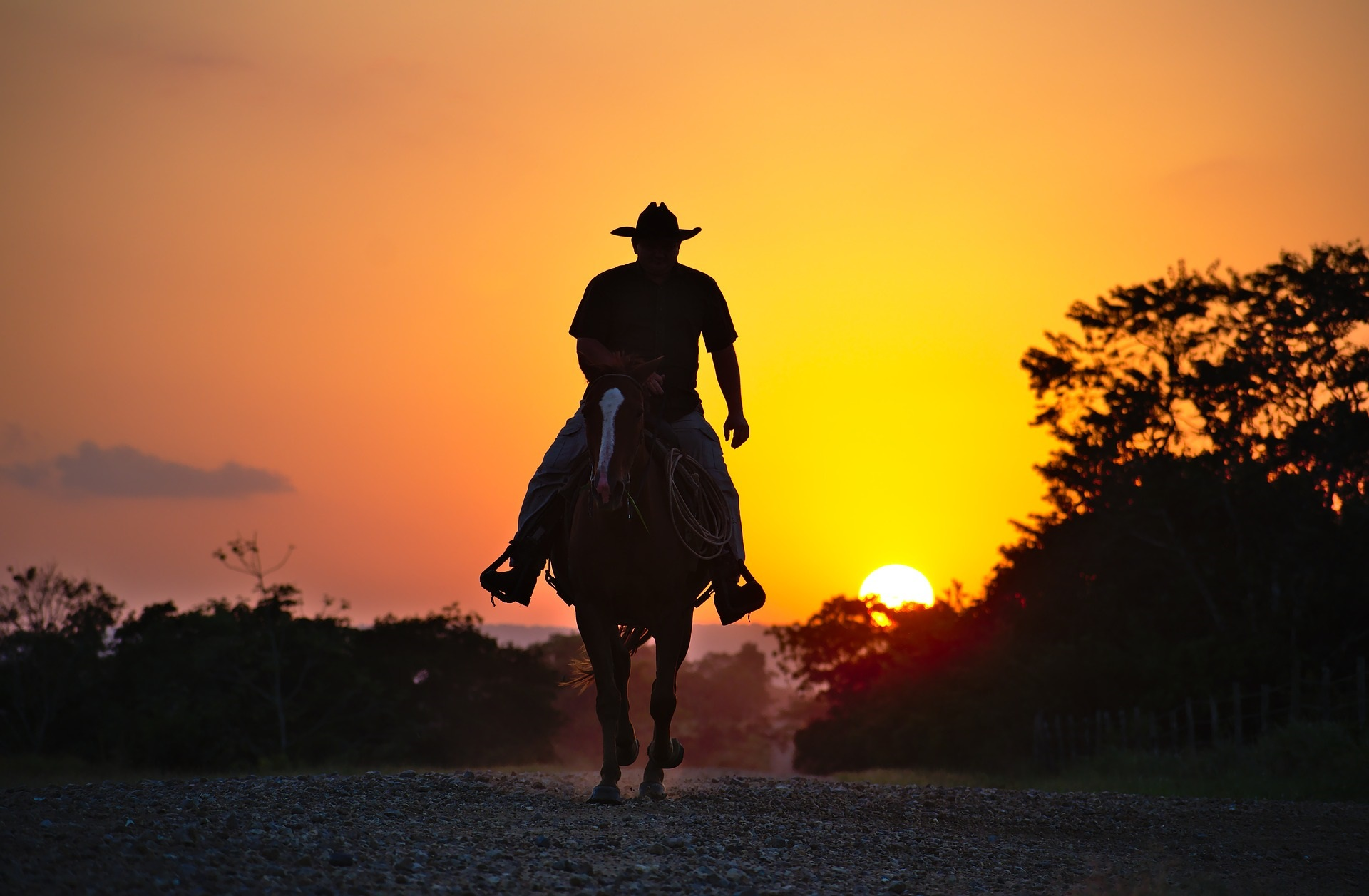 Massage Therapy For Horseback Riders